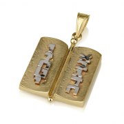 14k White and Yellow Gold Ten Commandments Necklace