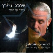 Shlomo Gronikh - On the way to the light