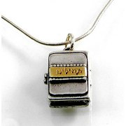 Silver and Gold Opening Microchip Psalms Pendant - Emunah