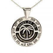 Sterling Silver Kabbalah Amulet for plenty, fertility & success - Maase BOmanut