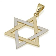White and Yellow 14k Gold Star of David Necklace