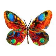 David Gerstein Alona Butterfly Israeli Art