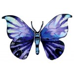 David Gerstein Yafa Butterfly Israeli Art