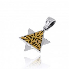 Silver Star of David Necklace with Golden Shema Yisrael